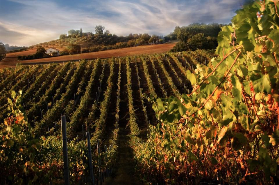 Three Days Of Wellness: Tuscany